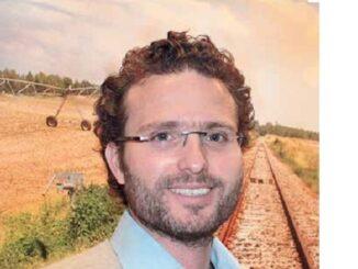 Rodrigo Koelle