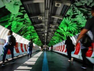 Estação de trem Vila Olímpia é inaugurada após projeto de modernização sustentável. Foto: FELIPE RAU/ESTADAO