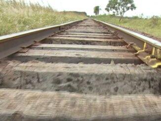 O projeto da nova Ferroeste prevê a privatização e construção de 1.285 quilômetros de trilhos entre MS e PR — Foto: Reprodução/TV Morena